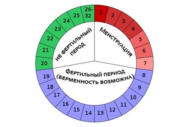 Безопасные для секса дни цикла как высчитать