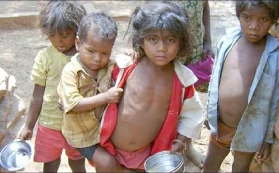 Какие прививки сделать перед поездкой в индию
