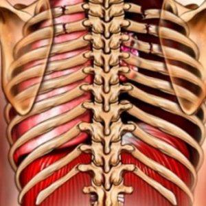 Методы лечения при разных переломах ребер