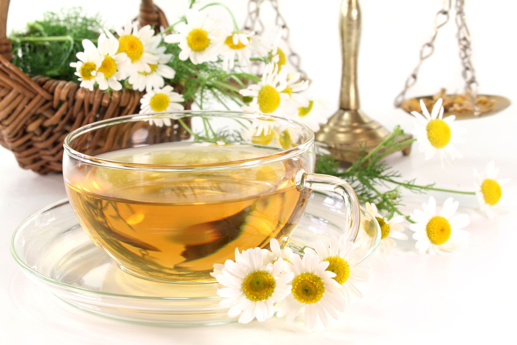 Ромашка аптечная (лекарственная трава) - полезные свойства 53