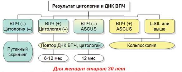 Image 2348