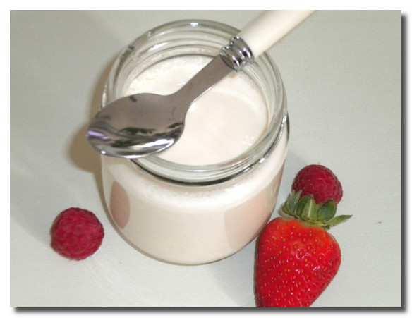 Domashnij-jogurt