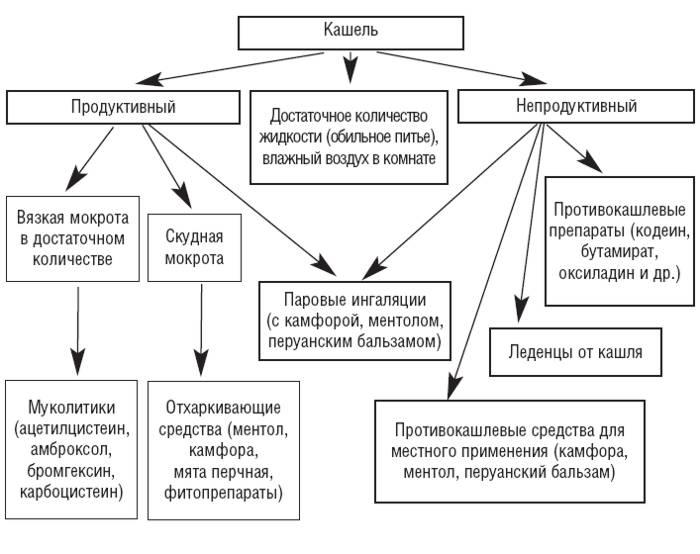 kacshel_443