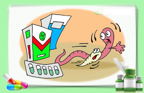 Лечение трихоцефалеза