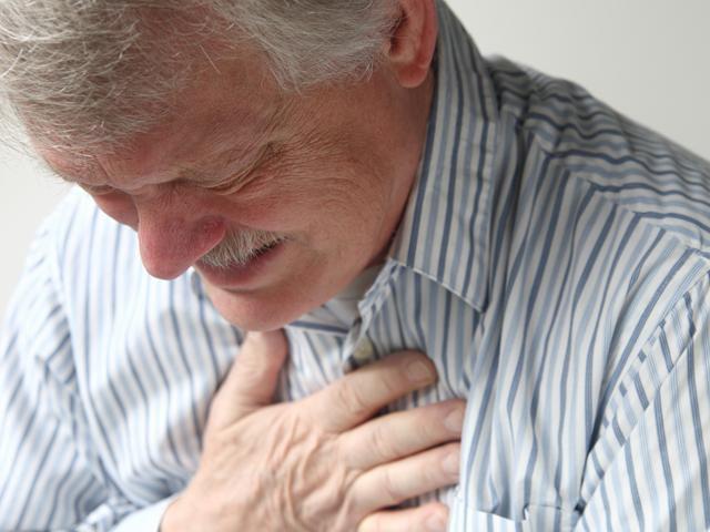 Симптомы внутреннего дирофиляриоза