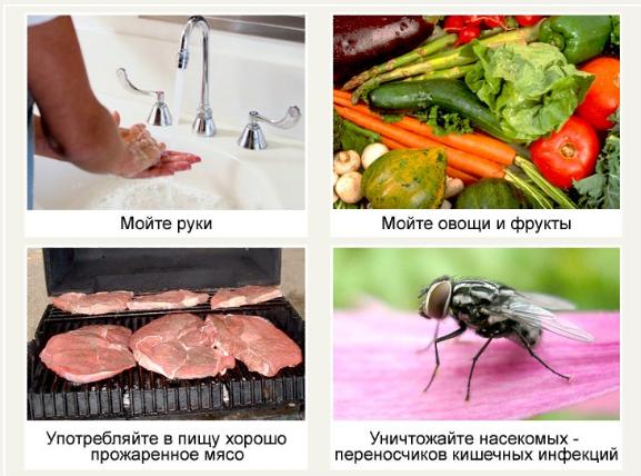 Профилактика пищевых токсикоинфекций