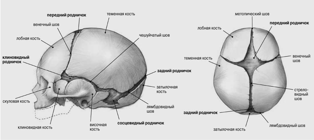 img02-1-ru