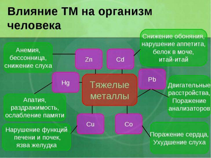 img9 (1)