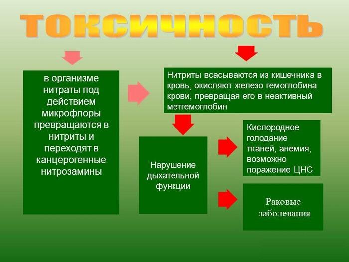 soderzhanie-nitratov-i-nitritov-v-ovoshhah-3