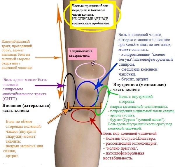 chto delat esli bolit koleno