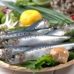 sardine-ryba