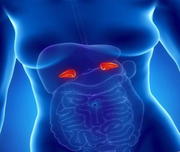 Опухоль надпочечников: симптомы у женщин и мужчин, лечение рака надпочечников в Москве
