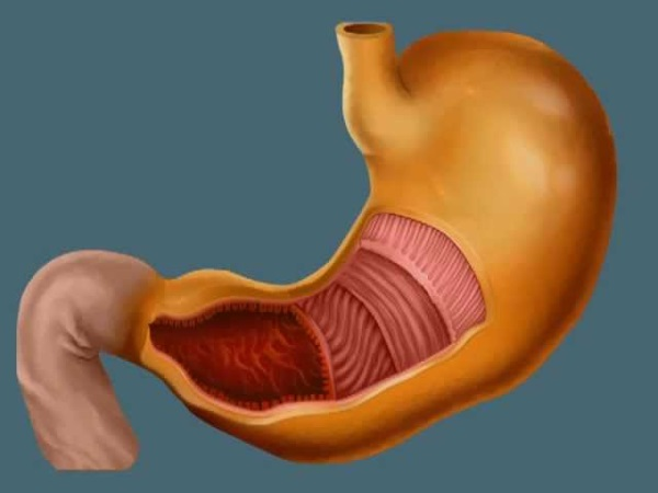 Пониженная кислотность желудка: симптомы и лечение