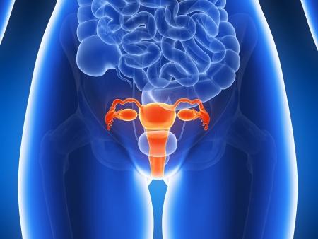 Рак тела матки: лечение и диагностика в Минске