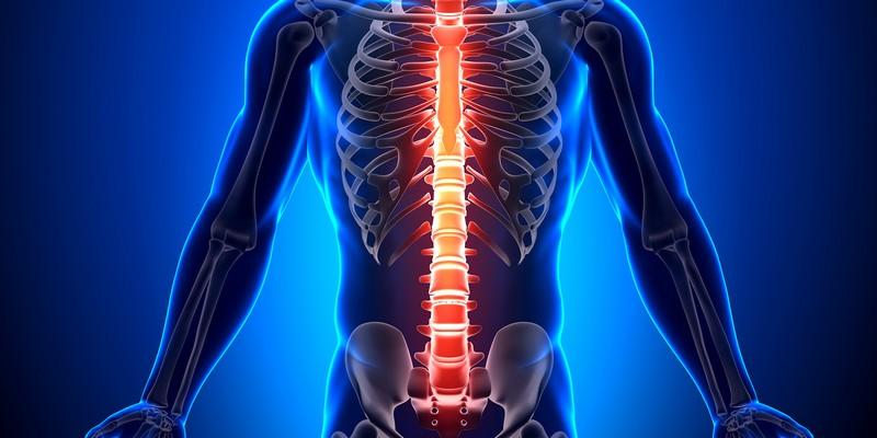 Туберкулез позвоночника и костей: симптомы у взрослых. Заразен или нет туберкулезный спондилит?